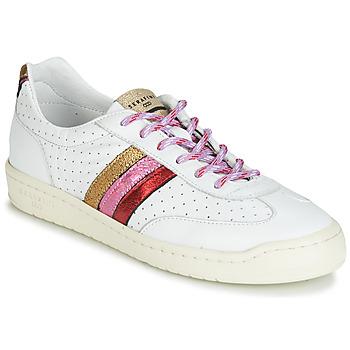 鞋子 女士 球鞋基本款 Serafini COURT 多彩
