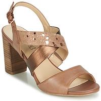 鞋子 女士 凉鞋 Caprice BOLAO 棕色
