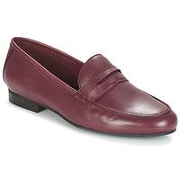鞋子 女士 皮便鞋 André TIM 波尔多红