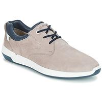 鞋子 男士 球鞋基本款 LLOYD ACHILLES 米色