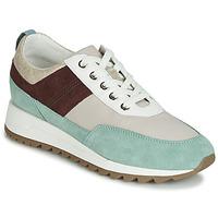 鞋子 女士 球鞋基本款 Geox 健乐士 D TABELYA 米色 / 棕色 / 绿色