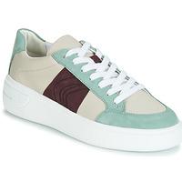鞋子 女士 球鞋基本款 Geox 健乐士 D OTTAYA 奶油色 / 绿色