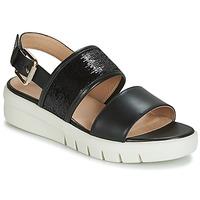 鞋子 女士 凉鞋 Geox 健乐士 D WIMBLEY SANDAL 黑色