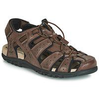 鞋子 男士 运动凉鞋 Geox 健乐士 UOMO SANDAL STRADA 棕色