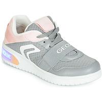 鞋子 女孩 高帮鞋 Geox 健乐士 J XLED GIRL 灰色 / 玫瑰色 / Led