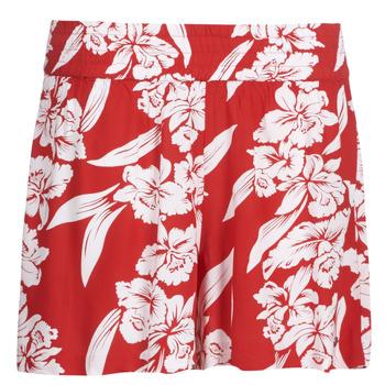 衣服 女士 短裤&百慕大短裤 Volcom ALOHA HA SHORT 红色