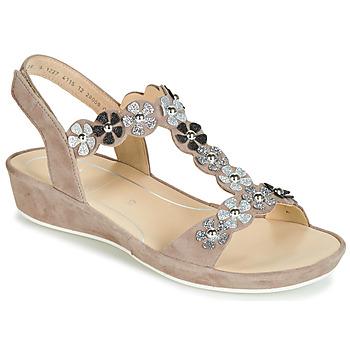 鞋子 女士 凉鞋 Ara CAP-HS 棕色