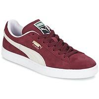 鞋子 球鞋基本款 Puma 彪马 SUEDE CLASSIC 红色 / 白色