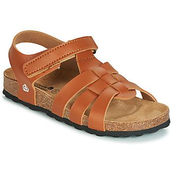 鞋子 男孩 凉鞋 Citrouille et Compagnie JANISOL 棕色
