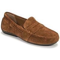 鞋子 男士 皮便鞋 Polo Ralph Lauren REYNOLD 棕色