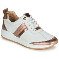 鞋子 女士 球鞋基本款 JB Martin 1KAP 白色