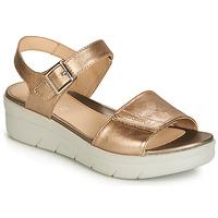 鞋子 女士 凉鞋 Stonefly 斯通富莱 AQUA III 2 LAMINATED 金色