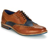 鞋子 男士 德比 Bugatti TROISCINQ 棕色 / 藍色