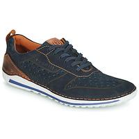鞋子 男士 球鞋基本款 Bugatti TIPPO 蓝色