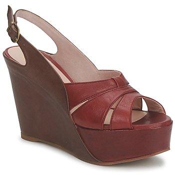 鞋子 女士 凉鞋 Paco Gil RITMO SELV 驼色 / 波尔多红