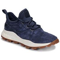 鞋子 男士 球鞋基本款 Timberland 添柏岚 BROOKLYN LACE OXFORD 蓝色