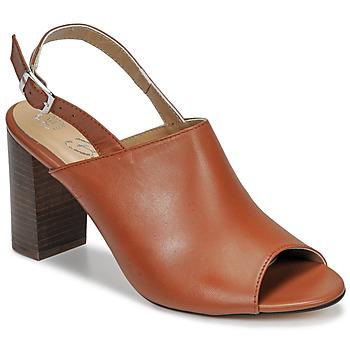 鞋子 女士 凉鞋 Betty London JIKOTEGE 驼色