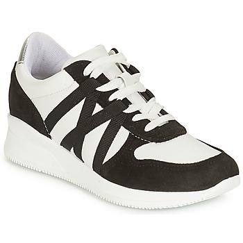 鞋子 女士 球鞋基本款 André ALLURE 黑色 / 白色