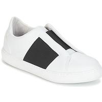 鞋子 女士 球鞋基本款 André AEROBIE 白色