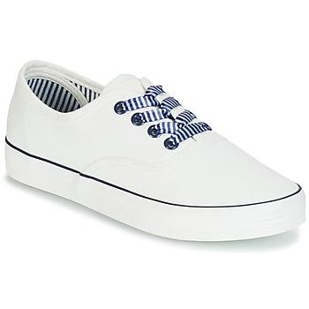 鞋子 女士 球鞋基本款 André STEAMER 白色