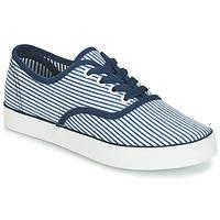 鞋子 女士 球鞋基本款 André STEAMER 蓝色 / 白色