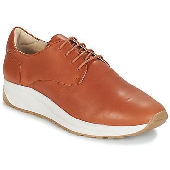 鞋子 男士 球鞋基本款 André VELVETINE 棕色