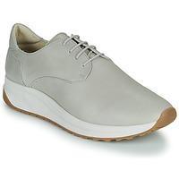 鞋子 男士 球鞋基本款 André VELVETINE 灰色
