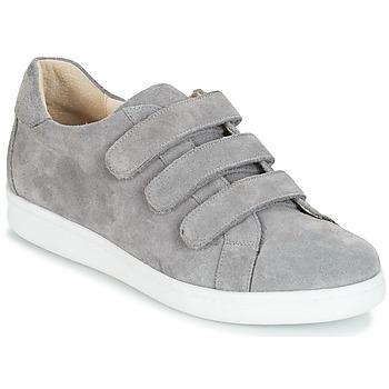 鞋子 男士 球鞋基本款 André AVENUE 灰色
