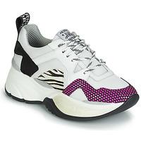 鞋子 女士 球鞋基本款 Meline ARGAGALI 白色 / 黑色