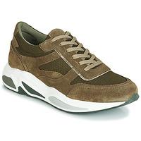 鞋子 女士 球鞋基本款 André ROLLO 绿色