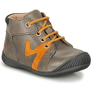 鞋子 男孩 短筒靴 GBB OVELO 灰色 / 驼色