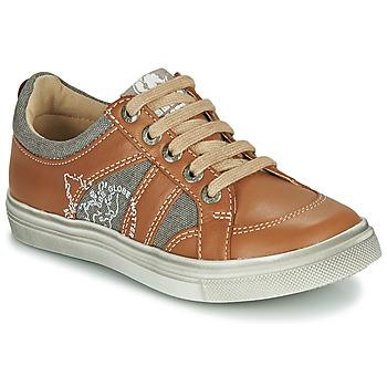 鞋子 男孩 球鞋基本款 GBB PALMYRE 棕色