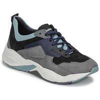 鞋子 女士 球鞋基本款 Timberland 添柏岚 DELPHIVILLE LEATHER SNEAK 黑色