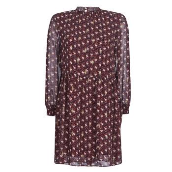 衣服 女士 短裙 Betty London LILY 波尔多红