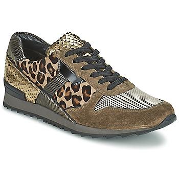 鞋子 女士 球鞋基本款 Kennel + Schmenger LIZAN 驼色