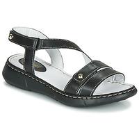 鞋子 女士 休闲凉拖/沙滩鞋 André ALIX 黑色