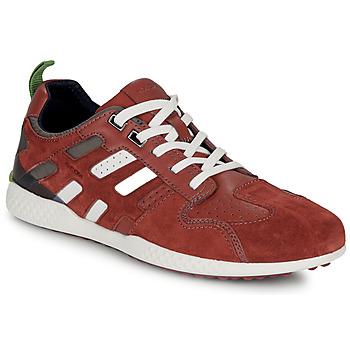 鞋子 男士 球鞋基本款 Geox 健乐士 U SNAKE.2 棕色 / 砖红色