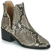 鞋子 女士 短筒靴 Steve Madden 史蒂夫·马登 CONSPIRE 米色 / Python