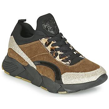鞋子 女士 球鞋基本款 Philippe Morvan VERSO V2 GLITTER FIN 棕色 / 黑色