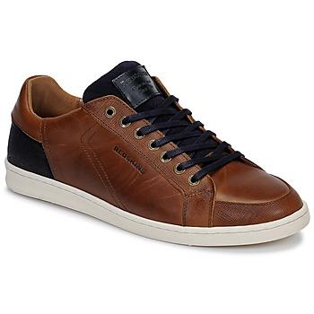 鞋子 男士 球鞋基本款 Redskins OSTAN 棕色 / 海藍色