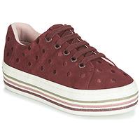 鞋子 女孩 球鞋基本款 Gioseppo FUSSEN 波爾多紅