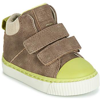 鞋子 男孩 高帮鞋 Gioseppo ERDING 灰褐色