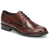鞋子 男士 德比 Carlington 卡尔顿 LOUVIAN 棕色