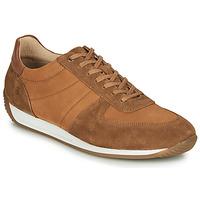 鞋子 男士 球鞋基本款 Casual Attitude LARY 駝色