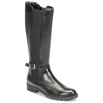 鞋子 女士 都市靴 André ELODIE 黑色