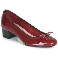 鞋子 女士 平底鞋 André POEME 红色