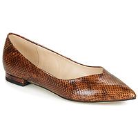 鞋子 女士 平底鞋 André LISERON 棕色