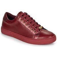 鞋子 女士 球鞋基本款 André BERKELEY 波尔多红