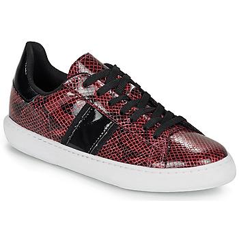 鞋子 女士 球鞋基本款 André FRISBEE 波尔多红