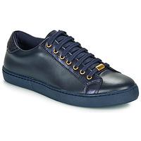 鞋子 女士 球鞋基本款 André BERKELEY 蓝色